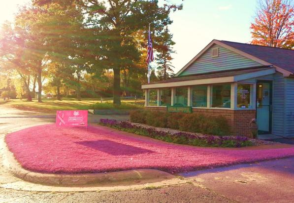 Pink lawn