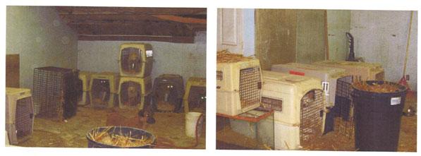crates-3