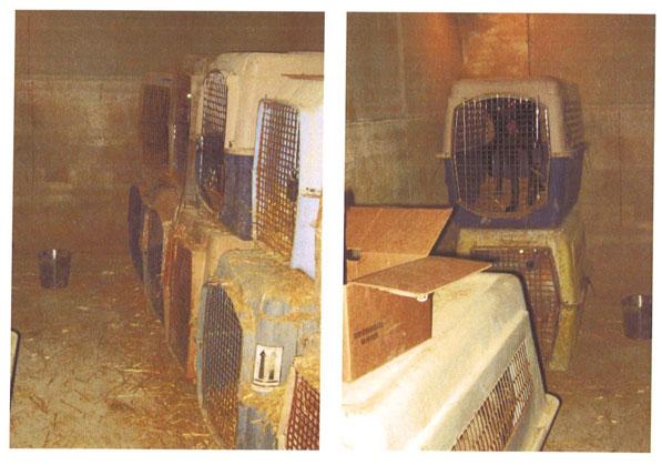 oas-crates-2