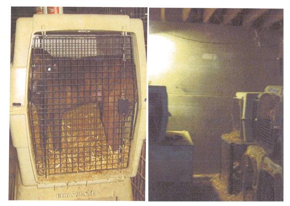 oas-crates