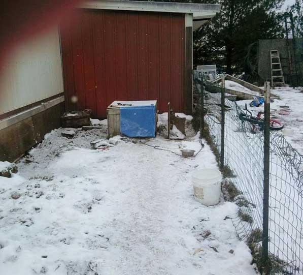 doghouse2