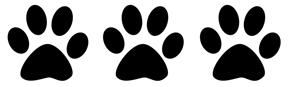three paws