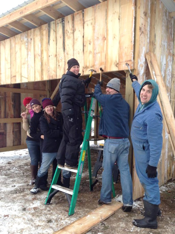 Volunteers help enclose the Girrbach shelter. Photo credit: PEACE Ranch Facebook page.