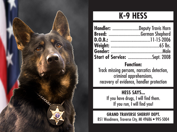 Trading-Card-Hess